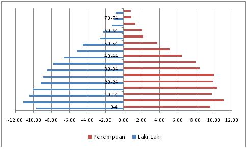 Cara membuat piramida penduduk dengan menggunakan wps spreadsheet piramid2 ccuart Choice Image