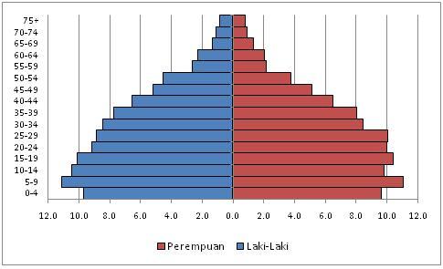 Membuat piramida penduduk dengan excel junaidi maka selesailah piramida penduduk kita seperti yang terlihat di bawah ini kita bisa menambahkan judul grafik nama sumbu vertikal nama sumbu horizontal ccuart Images